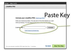 Limewire Pro - Paste License Key Here